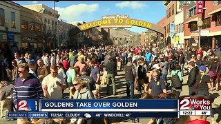 Goldens take over Golden