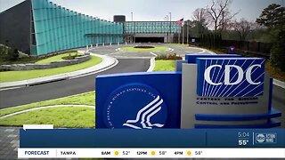 Coronavirus starts to negatively impact Tampa Bay businesses