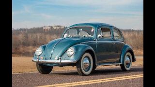 Classic Volkswagen Beetles