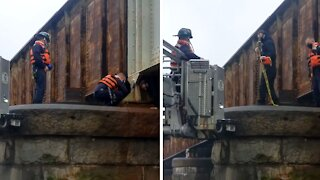 Dog rescued near Potomac River by DC Fire and Rescue, US Park Police