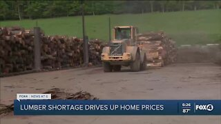 Rehabbers, home buyers slammed by soaring lumber prices