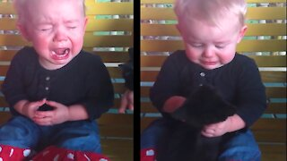 Funny Baby Video   Best Baby Video