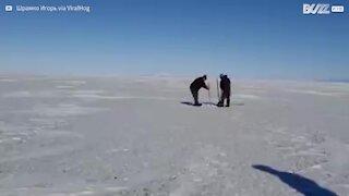 Un phoque sauvé des glaces au lac Baïkal