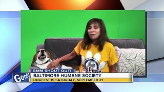 Good morning to Porkchop & The Baltimore Humane Society!