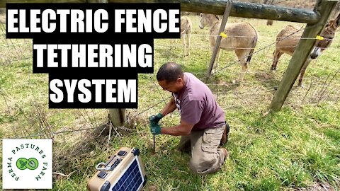 Electric Fence Tethering System