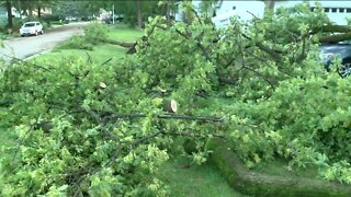 Preliminary survey of damage in Lake Geneva consistent with EF-0 tornado, NWS says