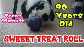 Sweet Treat Roll