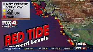 Concerns over red tide in Southwest Florida ahead of Thanksgiving holiday