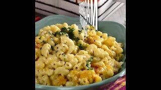 Macaroni with Cheese Gratin