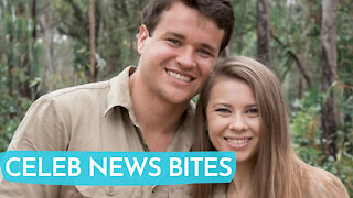 Bindi Irwin PREGNANT Announces She's PREGNANT 5 Months After Wedding!