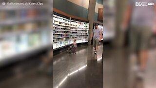 Cette fillette promène son chien en poussette