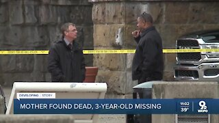 Stabbing victim's 3-year-old son missing after her death