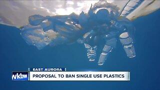 East Aurora proposes plastic ban