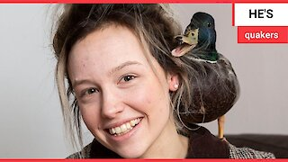 Meet Denzel the house duck - a lost and lonely duckling hand-reared by a cleaner