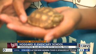 SCHOOL SHOUTOUT: Hoggard Elementary School (wednesday