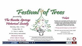 'Festival of Trees' fundraiser kicks off Monday night