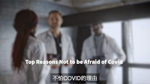 不惧怕 covid 的主要理由