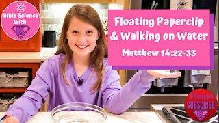 Floating Paperclip, Fun diy kids bible science at home. Walking on Water- Matthew 14:22-33