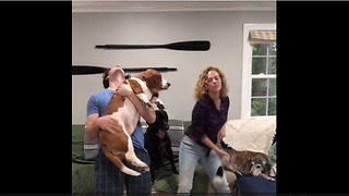 Epic family canine karaoke party