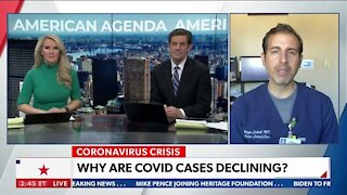 Why Are Covid Cases Declining?