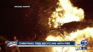 Christmas trees will fuel bonfire at Frisco celebration
