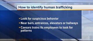 Caesars Entertainment tackles human trafficking in Las Vegas