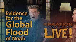 Evidence for the Global Flood of Noah (Creation Magazine LIVE! 8-03)