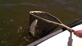 Free fishing weekend in Colorado