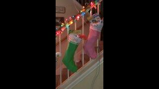 Christmas morning stockings!