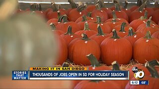 San Diego businesses increase hiring for the holidays