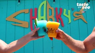 Sharky's on the Pier in Venice Beach, Florida   Taste and See Tampa Bay