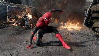 Spider-Man Trainer