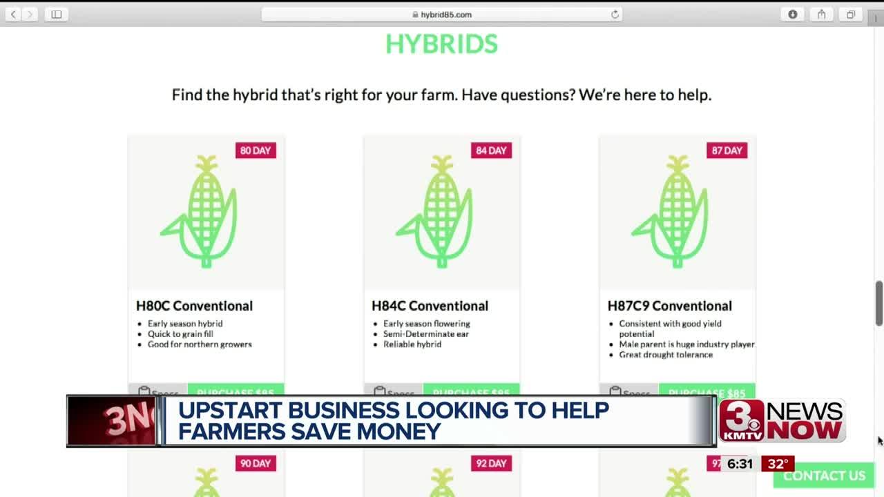 Corn Seed Business