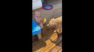 Baby can't stop laughing as she shares her water with doggy