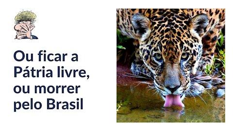 Ou ficar a Pátria livre, ou morrer pelo Brasil