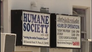 Humane Society of St. Lucie County running out of money