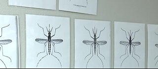 New West Nile virus research