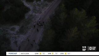 Walking Club: Exploring Bell Creek Preserve on a night hike