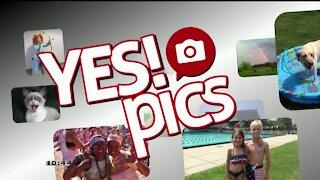 Yes! Pics - 11/4/20