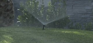 Water fines: How to conserve water and avoid paying
