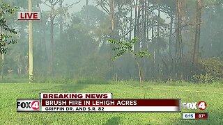 Brush fire in Fort Myers