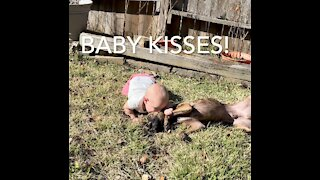 Puppy playing outside with laughing baby!