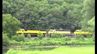 "New York Susquehanna & Western Rail Road ""All Yellow"""