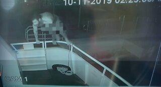 More video of naked burglar released