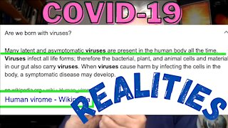 Covid19   Pcr Test   Fact Before Fiction