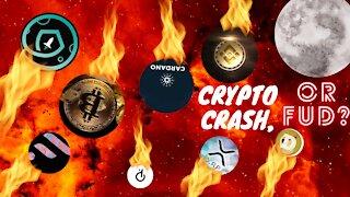 Crypto Crash or FUD?
