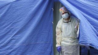 New Coronavirus Variant Found In New York