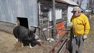 South Dakota Smithfield Meat Plant To Reopen Soon