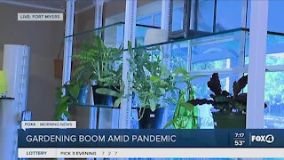 Gardening industry booming during the pandemic