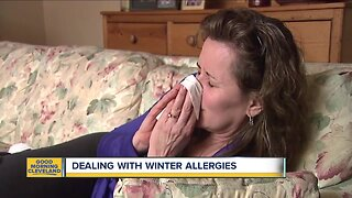 How to minimize your winter, indoor allergy symptoms